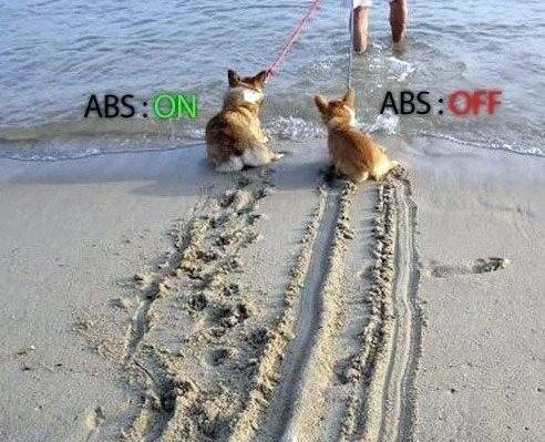 como funciona o freio abs dois cachorrinhos deixam um rastro na areia quando são arrastados para o mar um vai pisando e outro deslisa