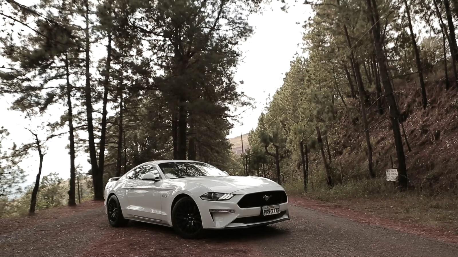 Ford Mustang GT é esportivo de quase R$ 300 mil