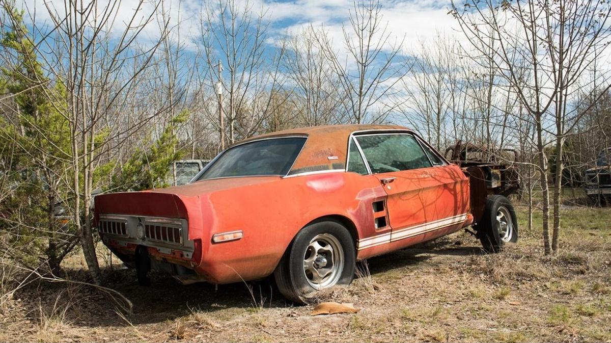 mustang little red