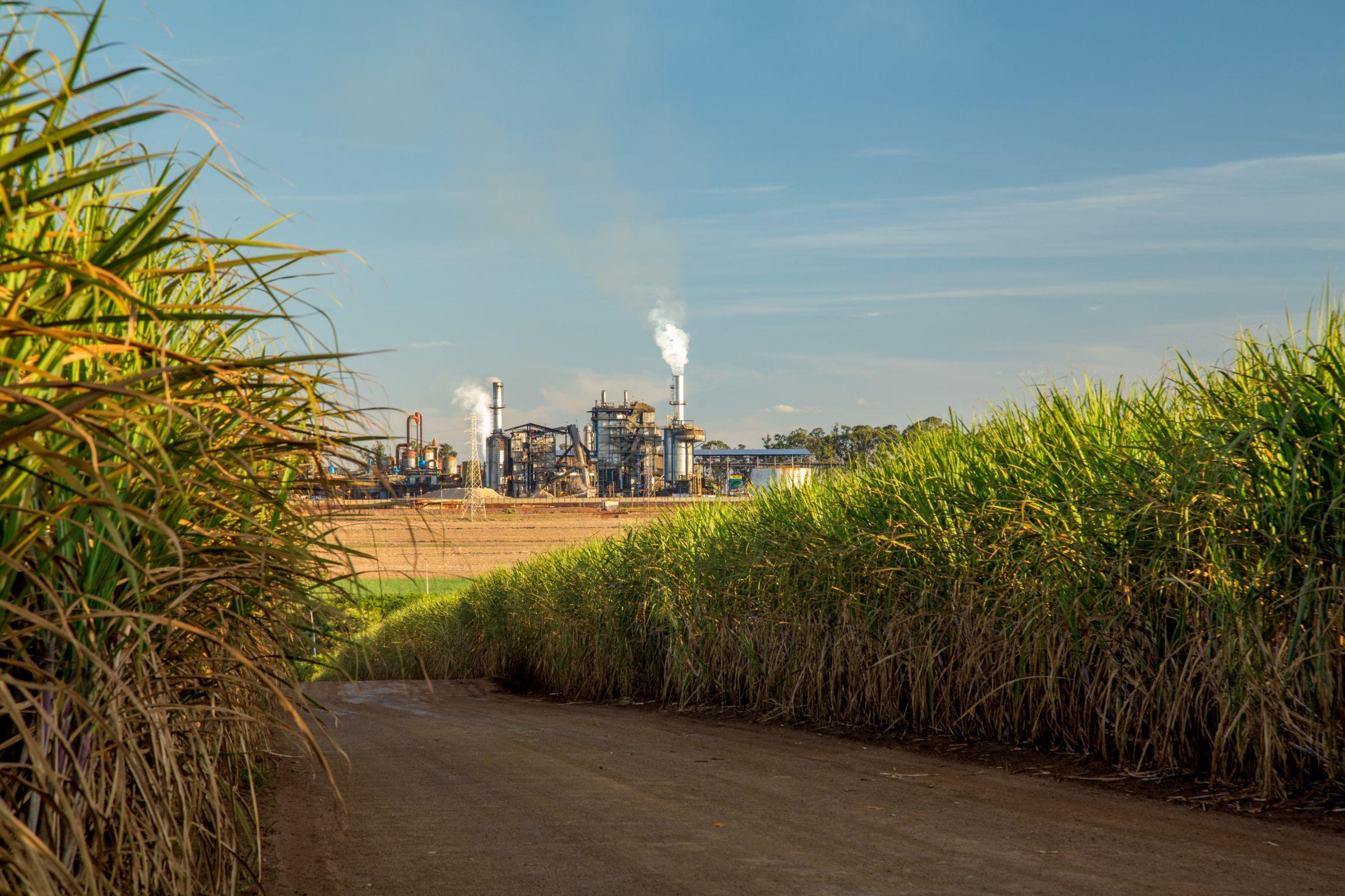 refinaria de etanol combustivel foto shutterstock