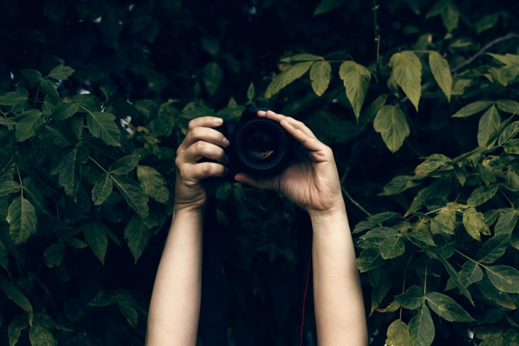 fotografo escondido