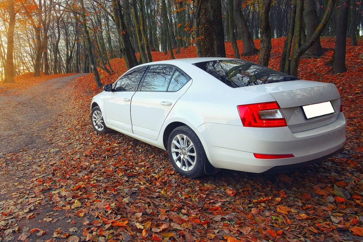 Crença popular diz que um carro pega fogo se for estacionado sobre folhas secas, palha, jornais ou outros materiais inflamáveis