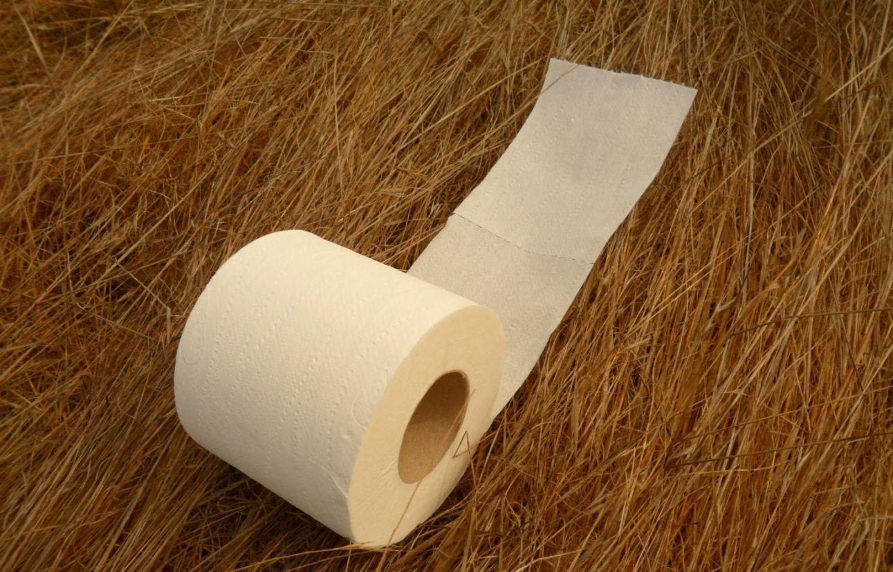 papel higienico corte