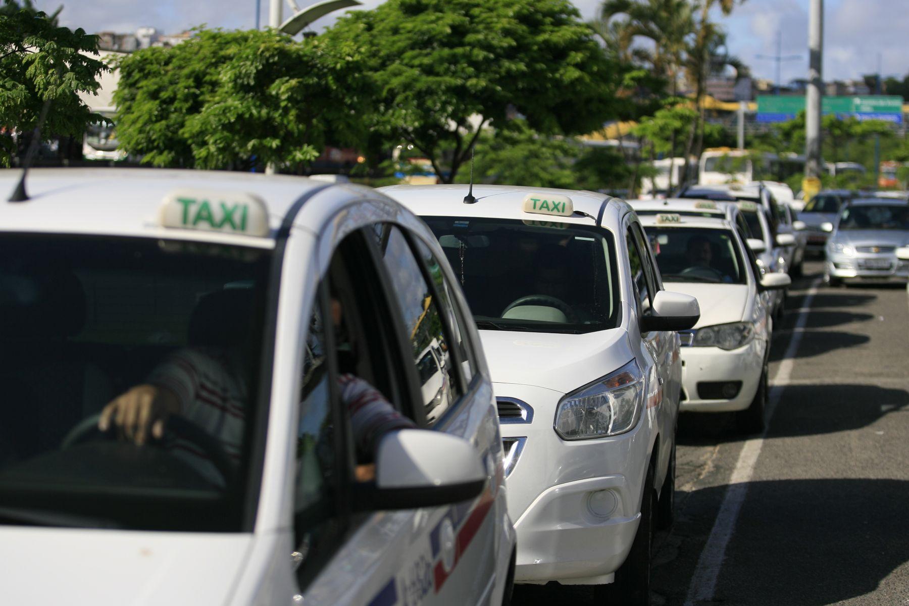 fila de carros brancos com placa de taxi em salvador bahia