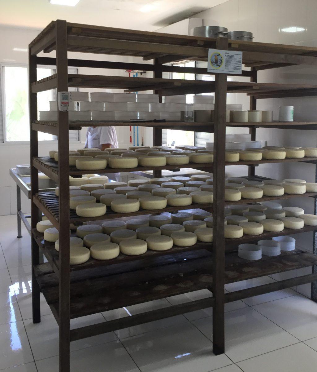 yamaha mt 07 canastra 8 producao dos queijos