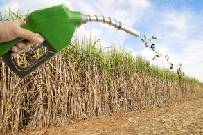 Lobby não permite reduzir etanol na gasolina
