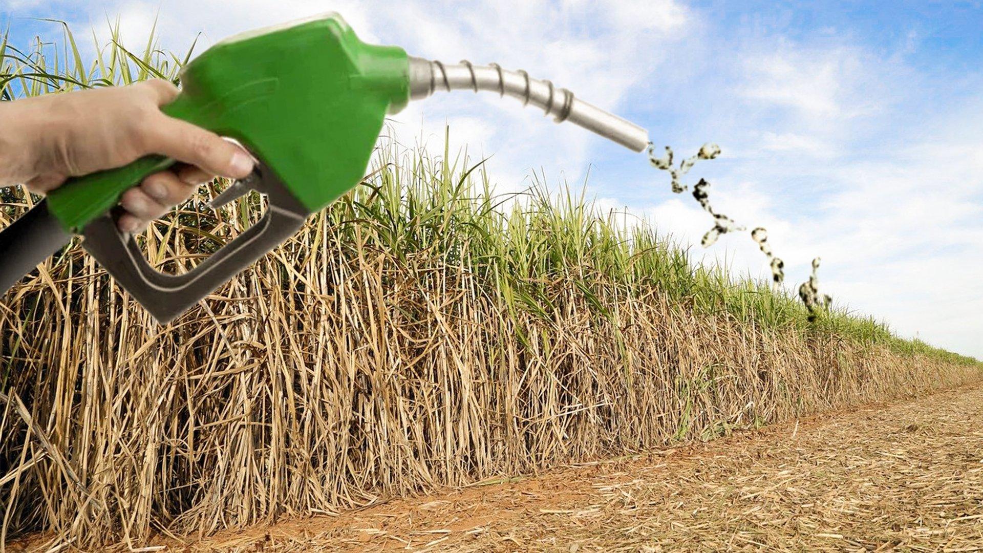 lobby etanol