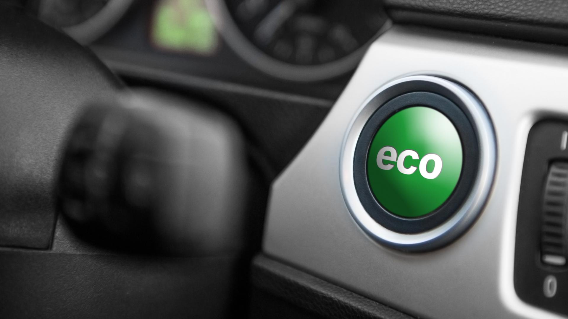 """""""ECO"""" pode ser de ecologia ou economia"""